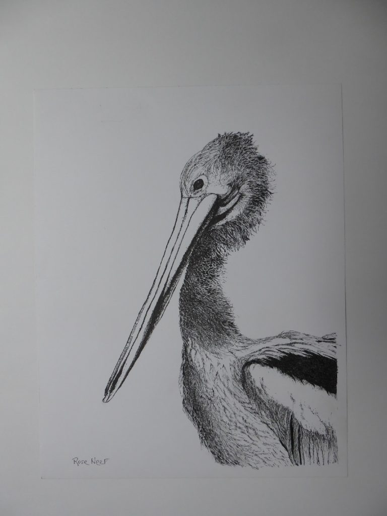 Painting 39-What a Wonderful Bird is the Pelican-Rosalie Neef