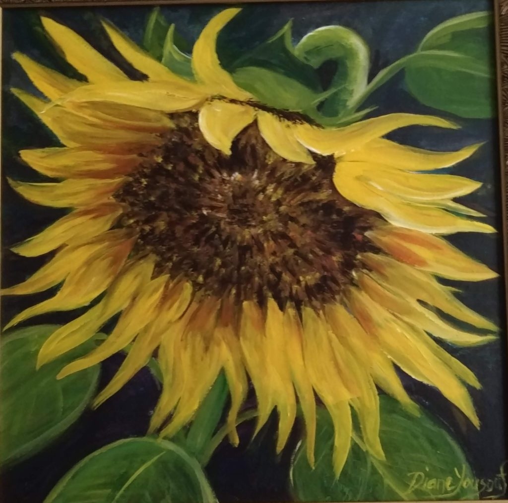 Sunflower_Diane Yousouf